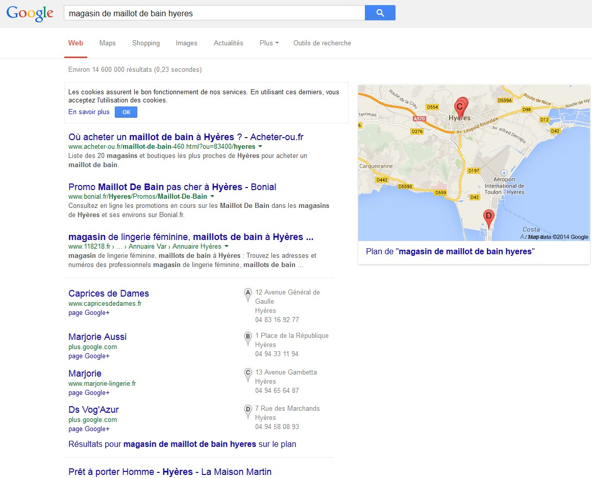 google referencement local